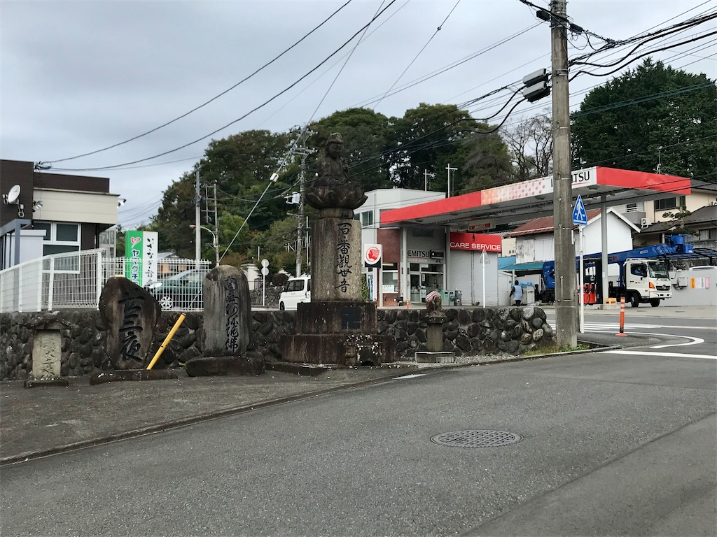 f:id:yokohamamiuken:20201023094840j:image
