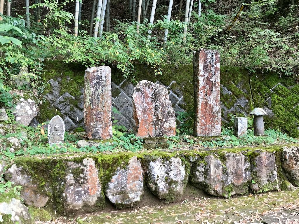 f:id:yokohamamiuken:20201023100153j:image