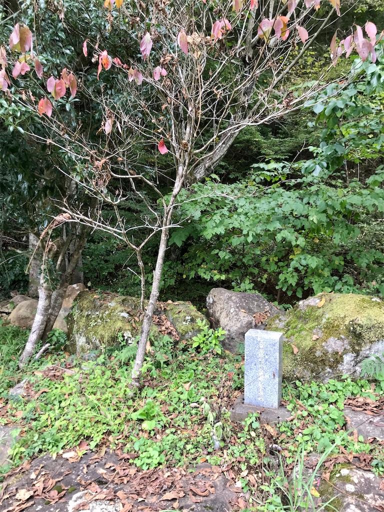 f:id:yokohamamiuken:20201023100158j:image