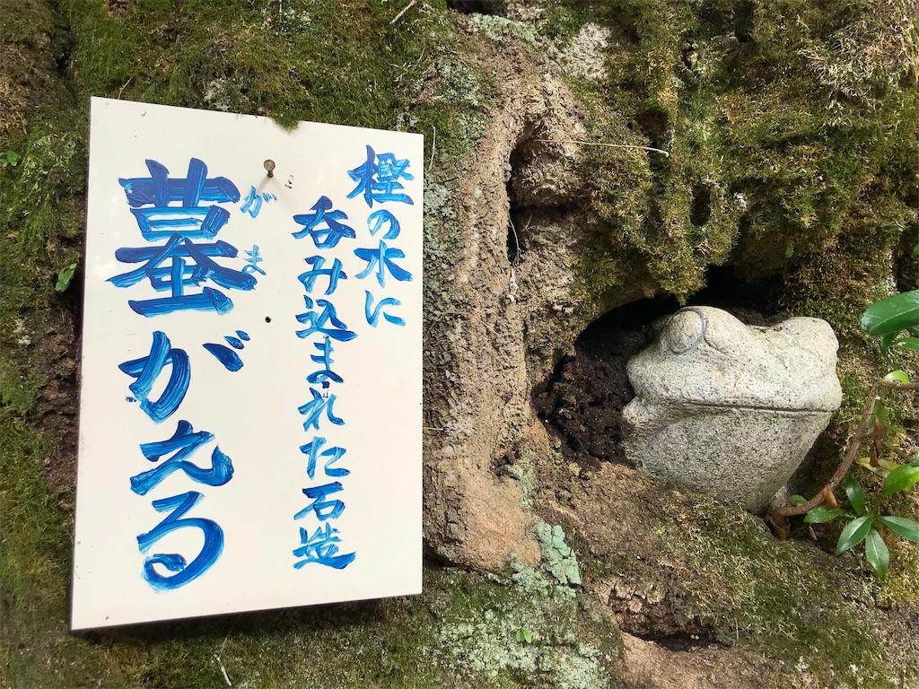 f:id:yokohamamiuken:20201023101006j:image