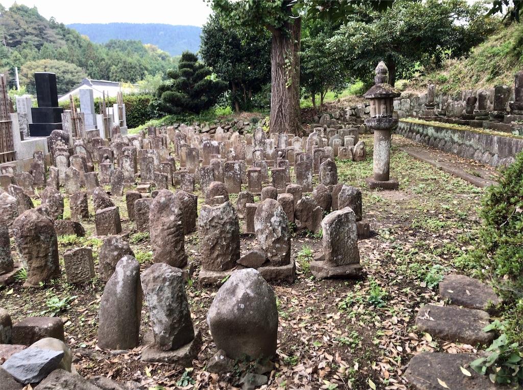 f:id:yokohamamiuken:20201023101609j:image