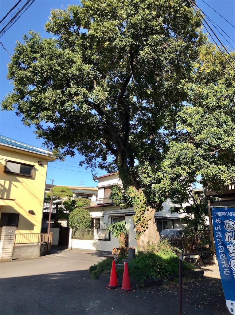 f:id:yokohamamiuken:20201105102759j:image