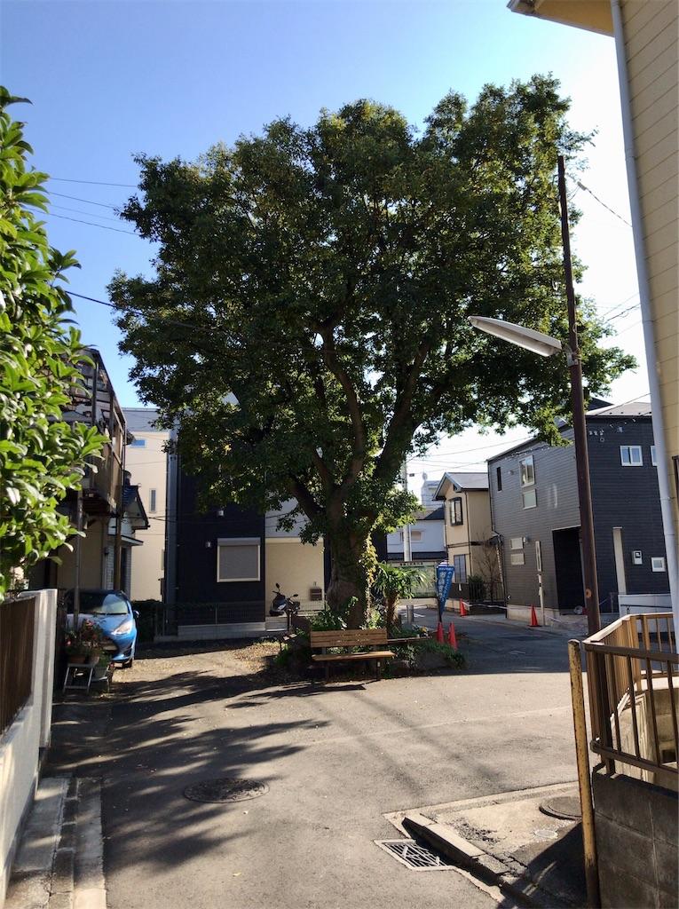 f:id:yokohamamiuken:20201105102809j:image