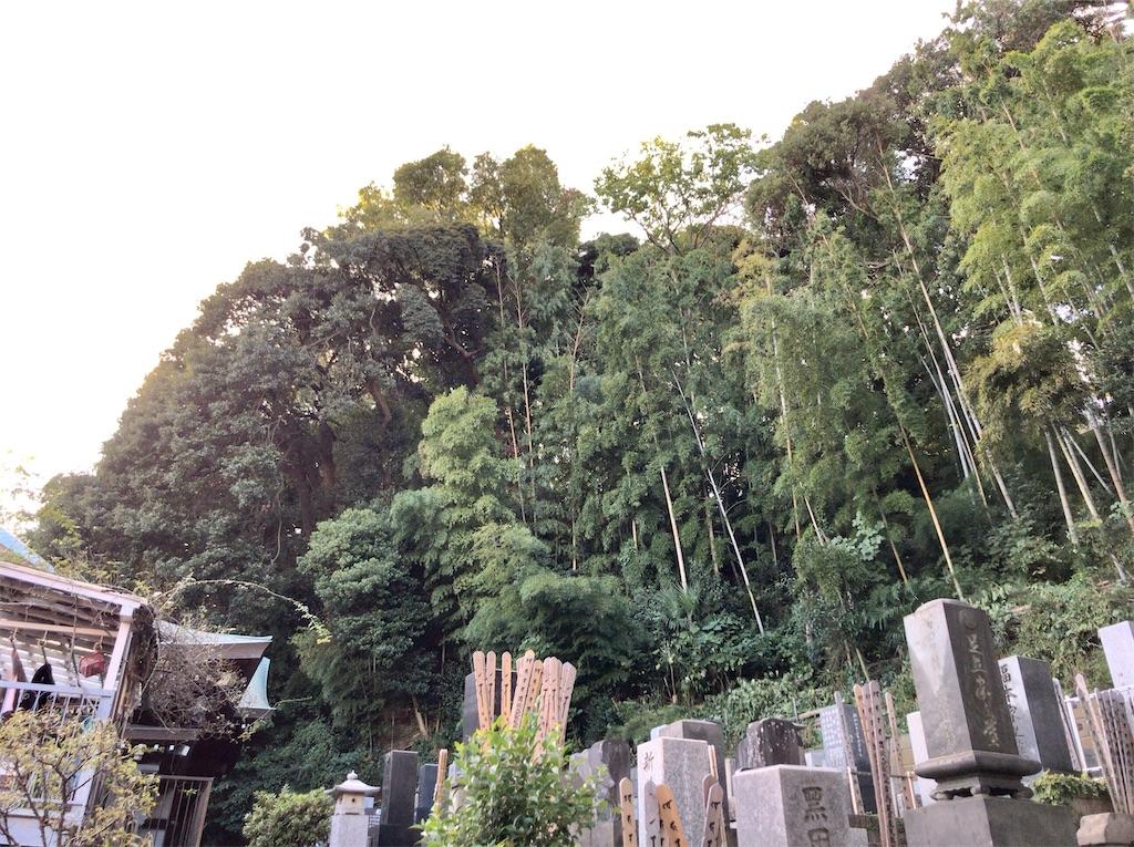 f:id:yokohamamiuken:20201105103249j:image