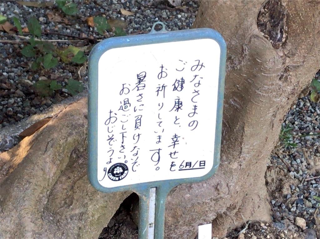 f:id:yokohamamiuken:20201105165913j:image