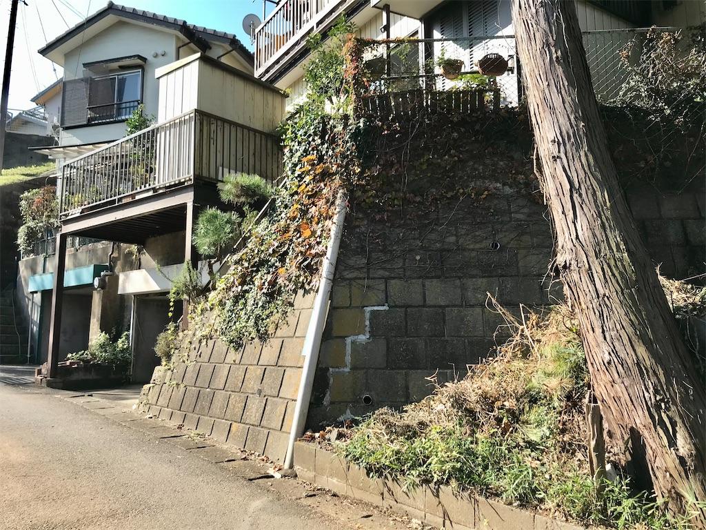 f:id:yokohamamiuken:20201116181646j:image