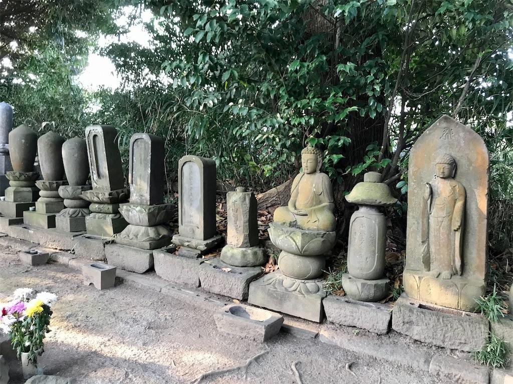 f:id:yokohamamiuken:20201127181633j:image