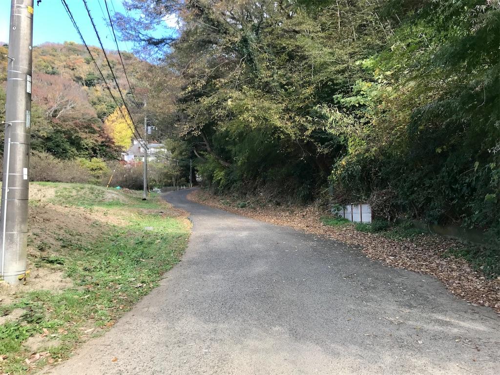 f:id:yokohamamiuken:20201201102248j:image