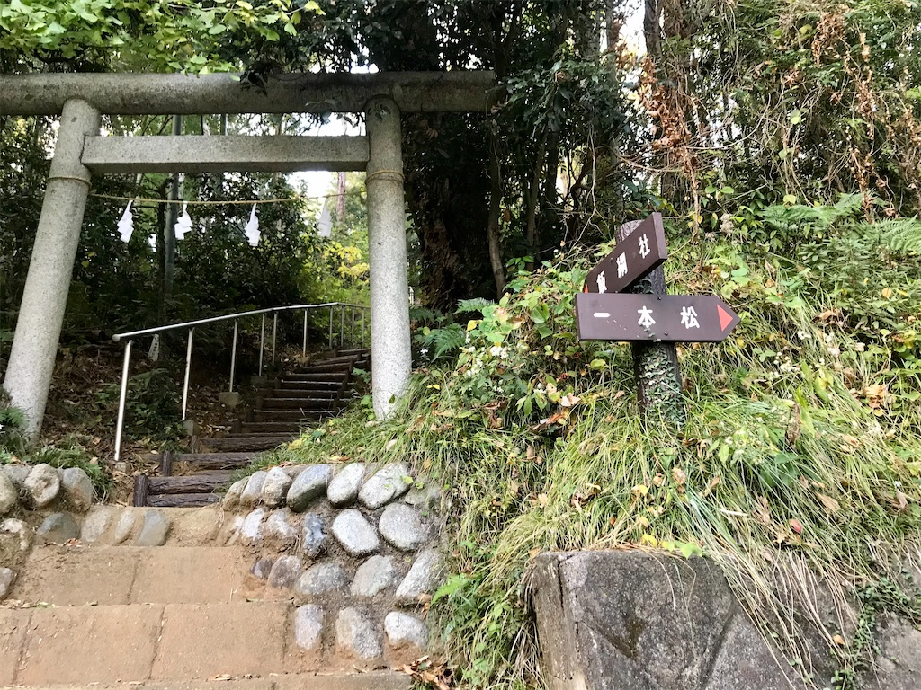 f:id:yokohamamiuken:20201201102650j:image
