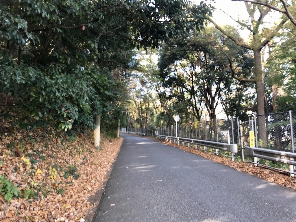 f:id:yokohamamiuken:20201201102714j:image