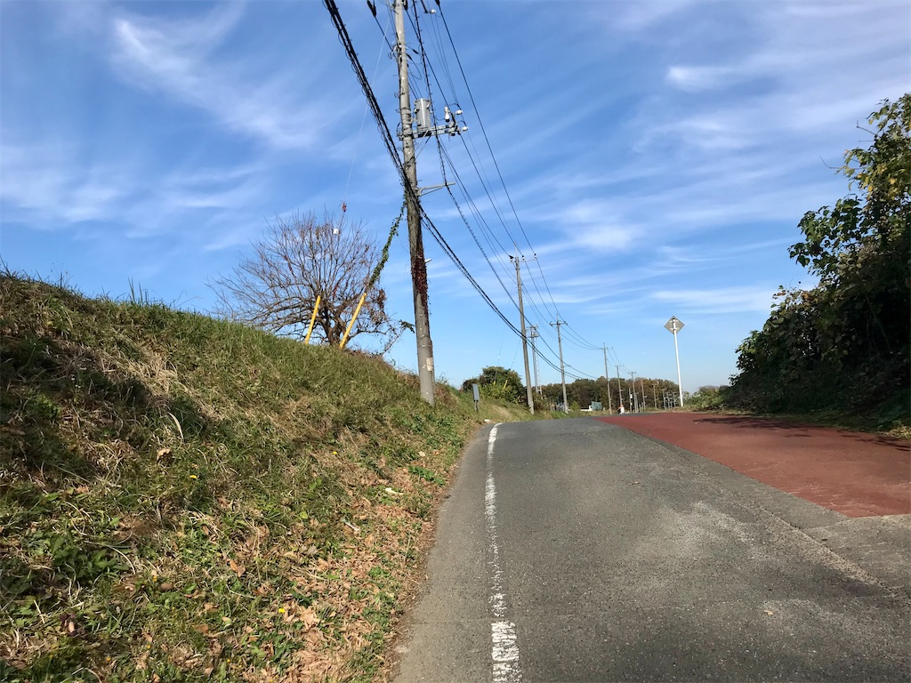 f:id:yokohamamiuken:20201201103223j:image
