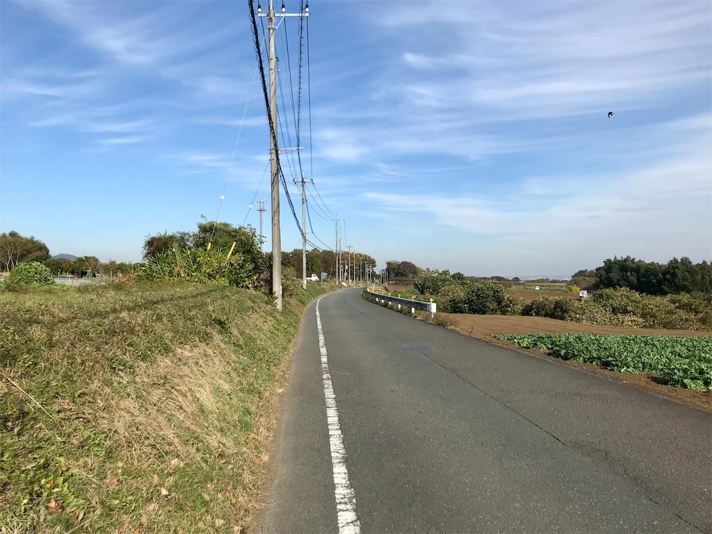 f:id:yokohamamiuken:20201201103227j:image
