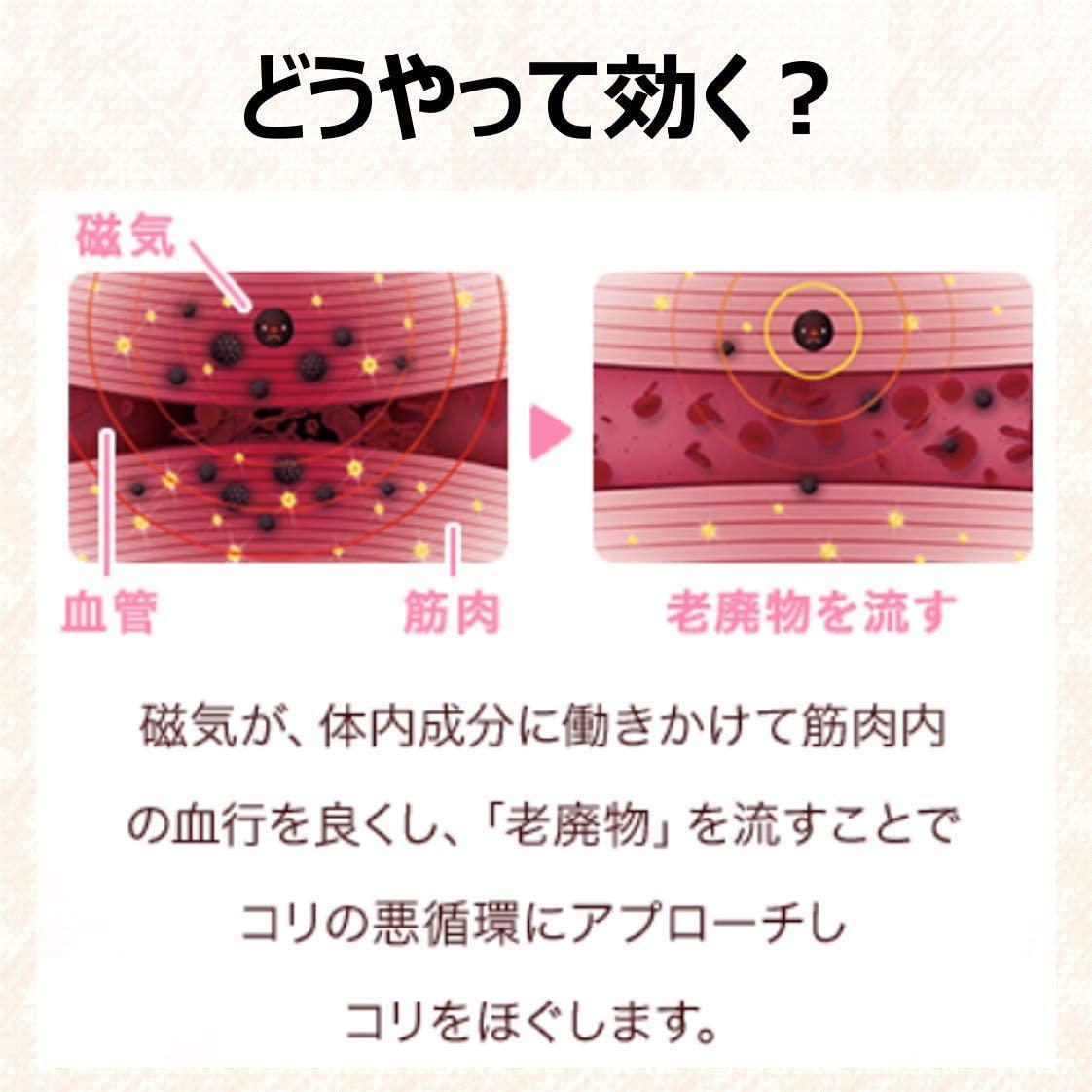 f:id:yokohamamiuken:20201215052914p:plain
