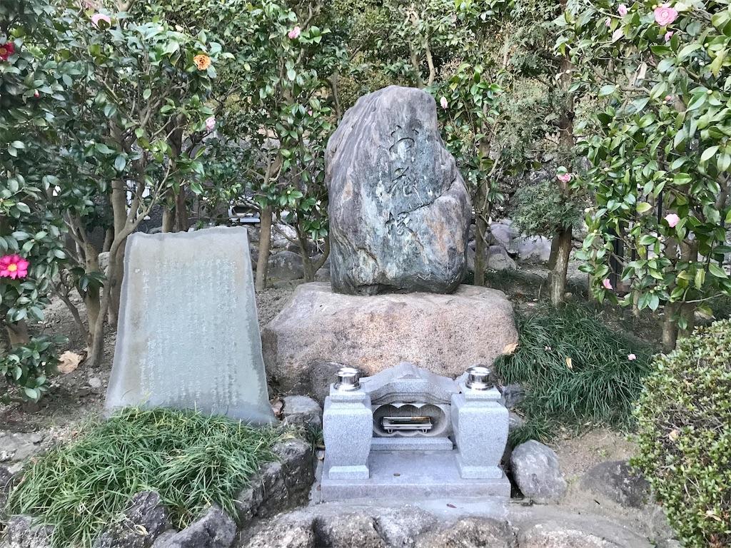 f:id:yokohamamiuken:20210109073758j:image