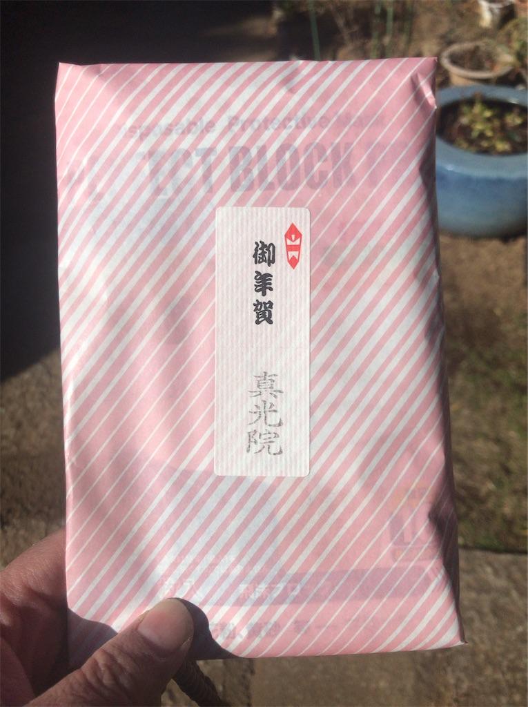 f:id:yokohamamiuken:20210109074700j:image