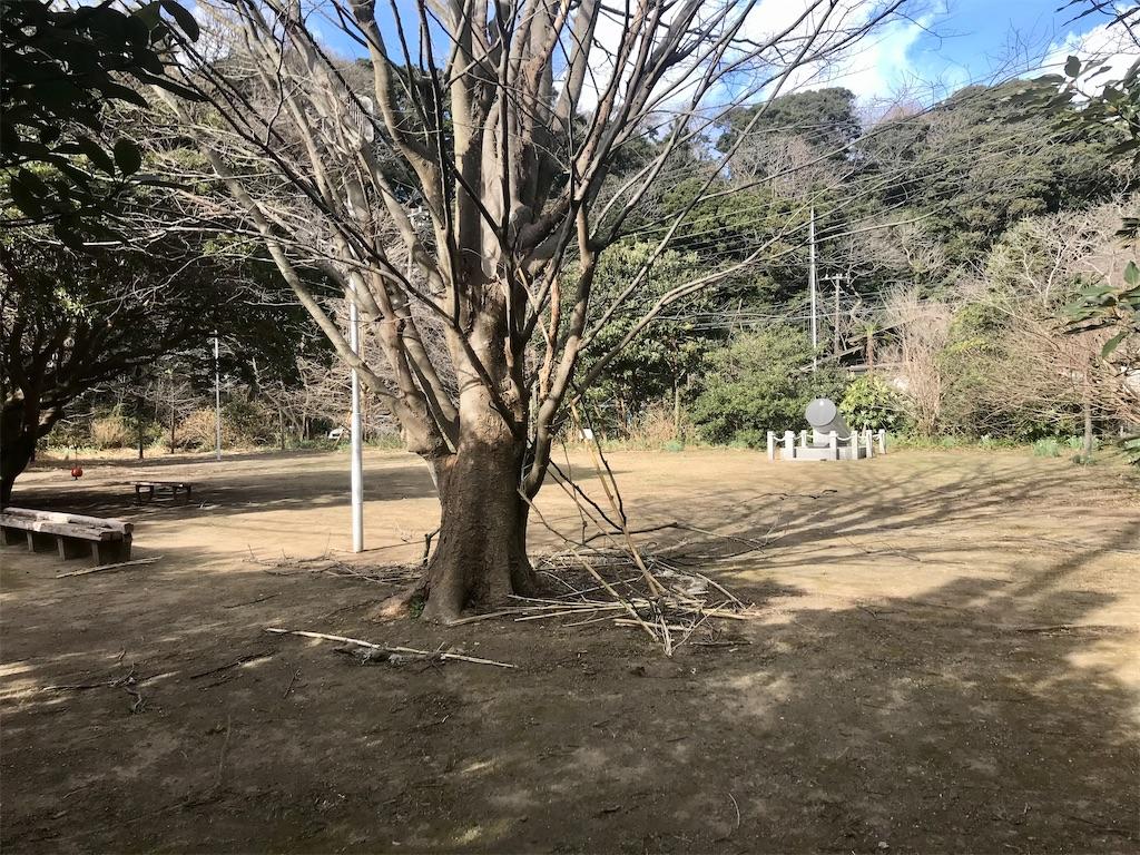 f:id:yokohamamiuken:20210109075055j:image