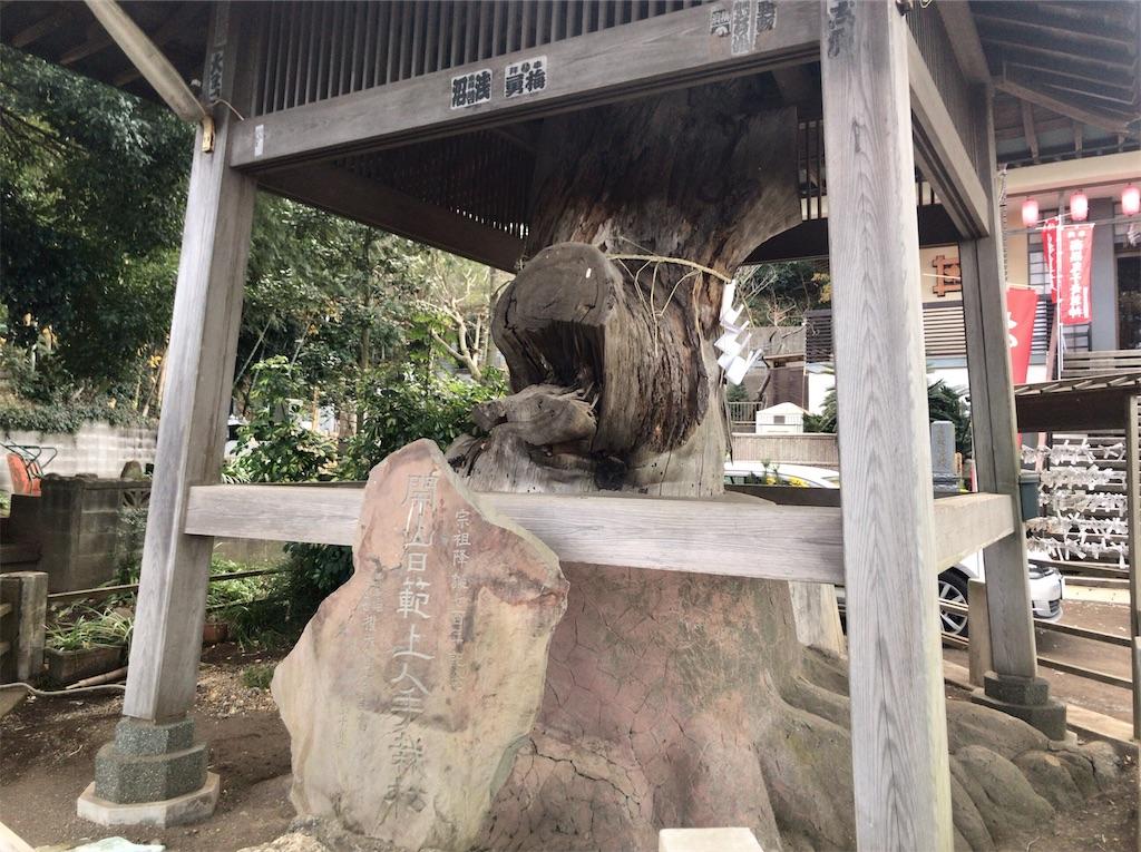 f:id:yokohamamiuken:20210109080508j:image