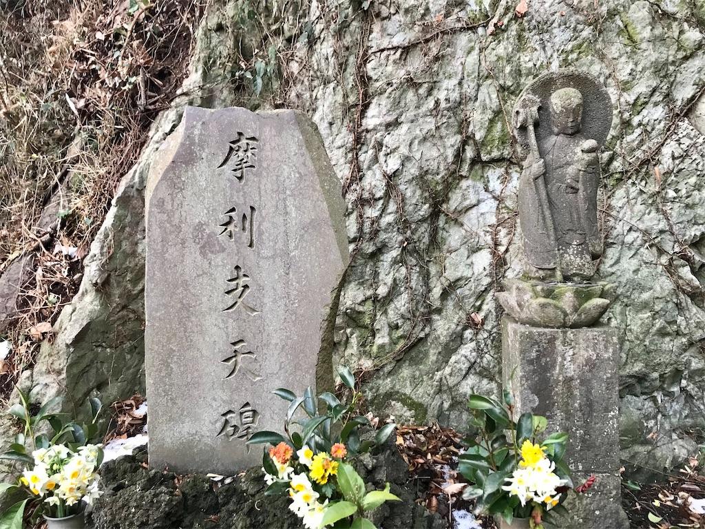 f:id:yokohamamiuken:20210109081553j:image