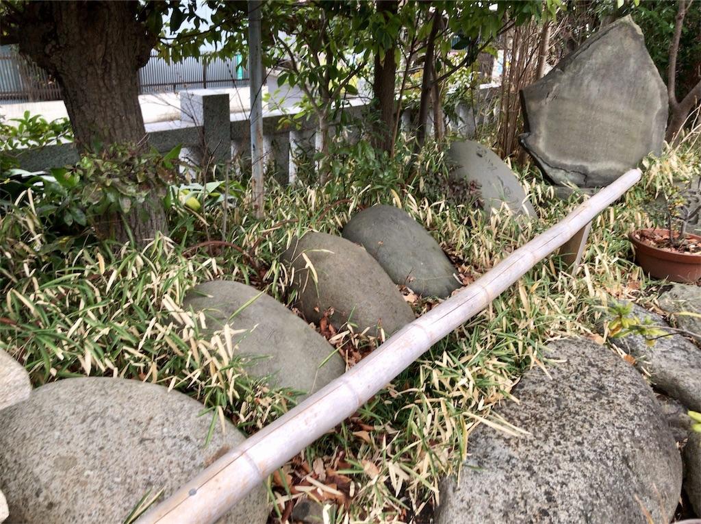 f:id:yokohamamiuken:20210127215140j:image