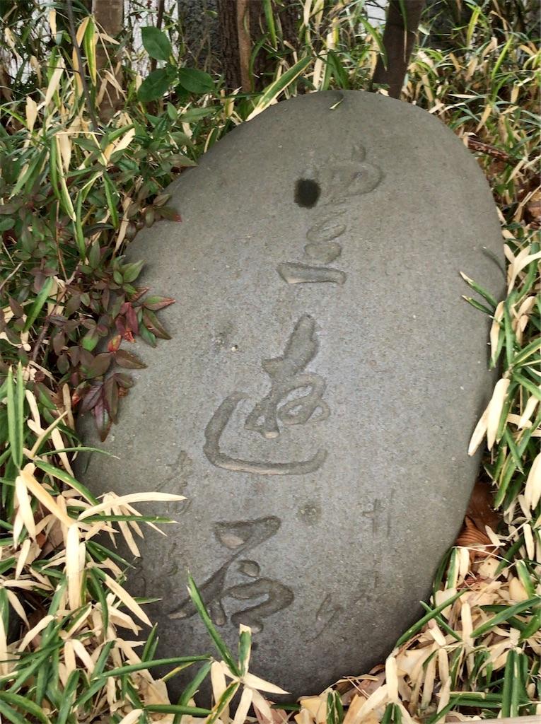 f:id:yokohamamiuken:20210127215200j:image