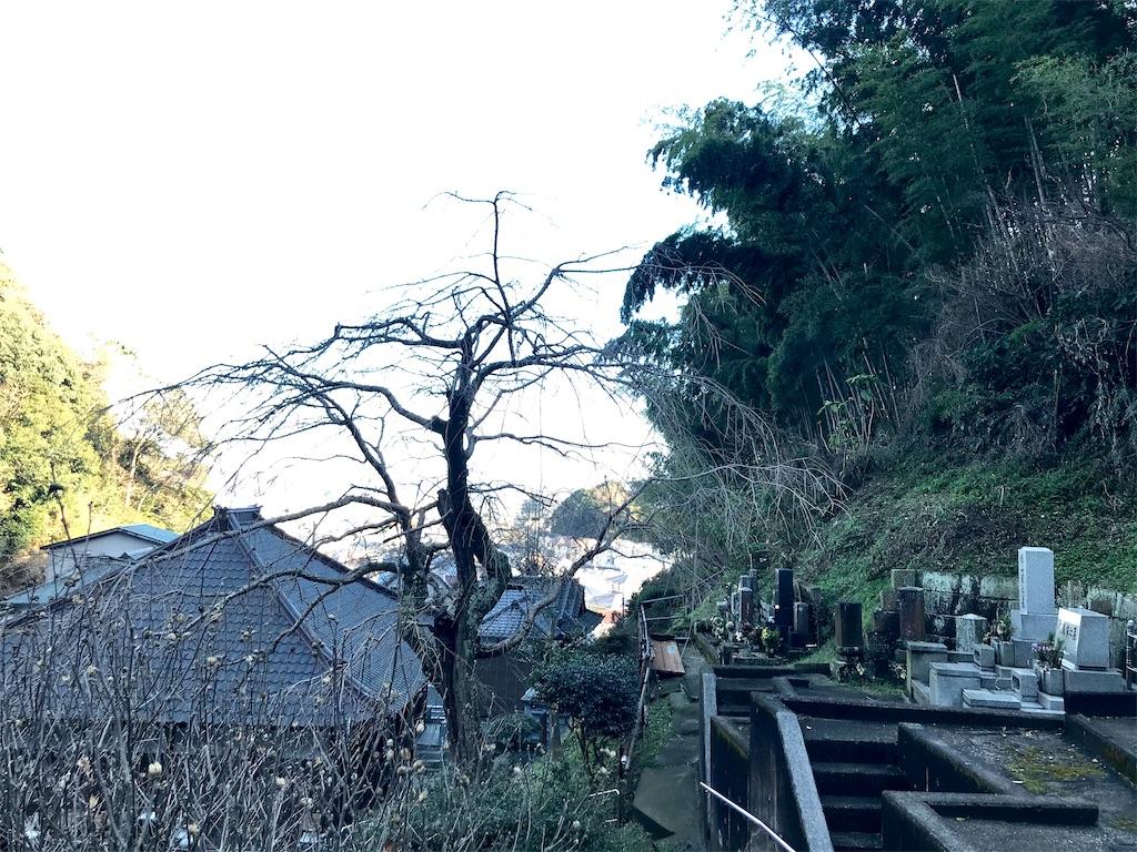 f:id:yokohamamiuken:20210202224719j:image