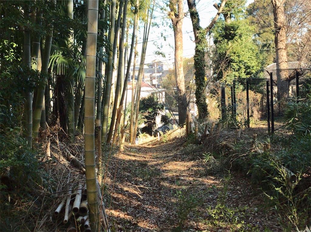 f:id:yokohamamiuken:20210204094846j:image