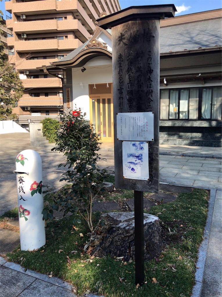 f:id:yokohamamiuken:20210204100202j:image
