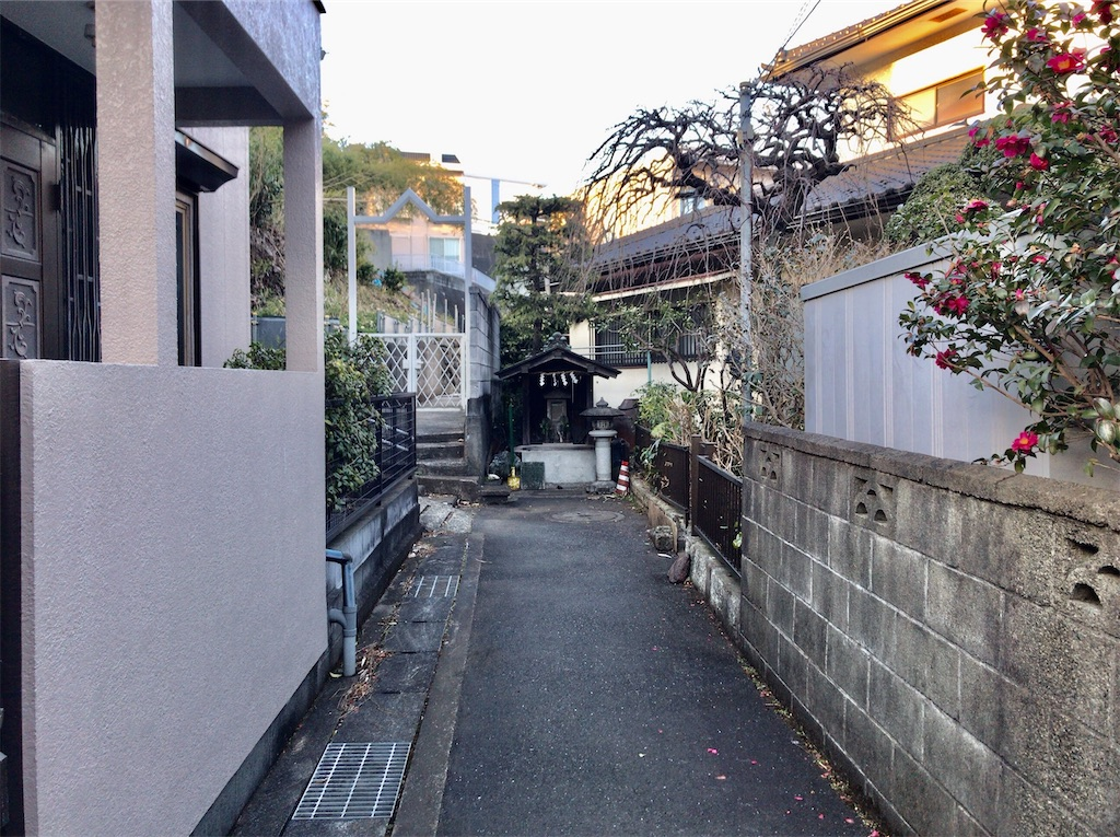 f:id:yokohamamiuken:20210204102156j:image