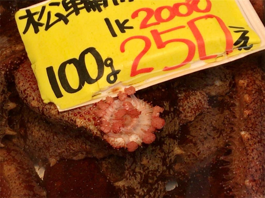 f:id:yokohamamiuken:20210212132705j:image