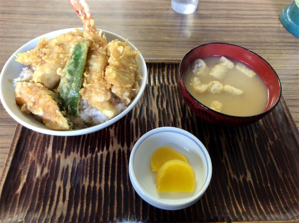 f:id:yokohamamiuken:20210219180024j:image