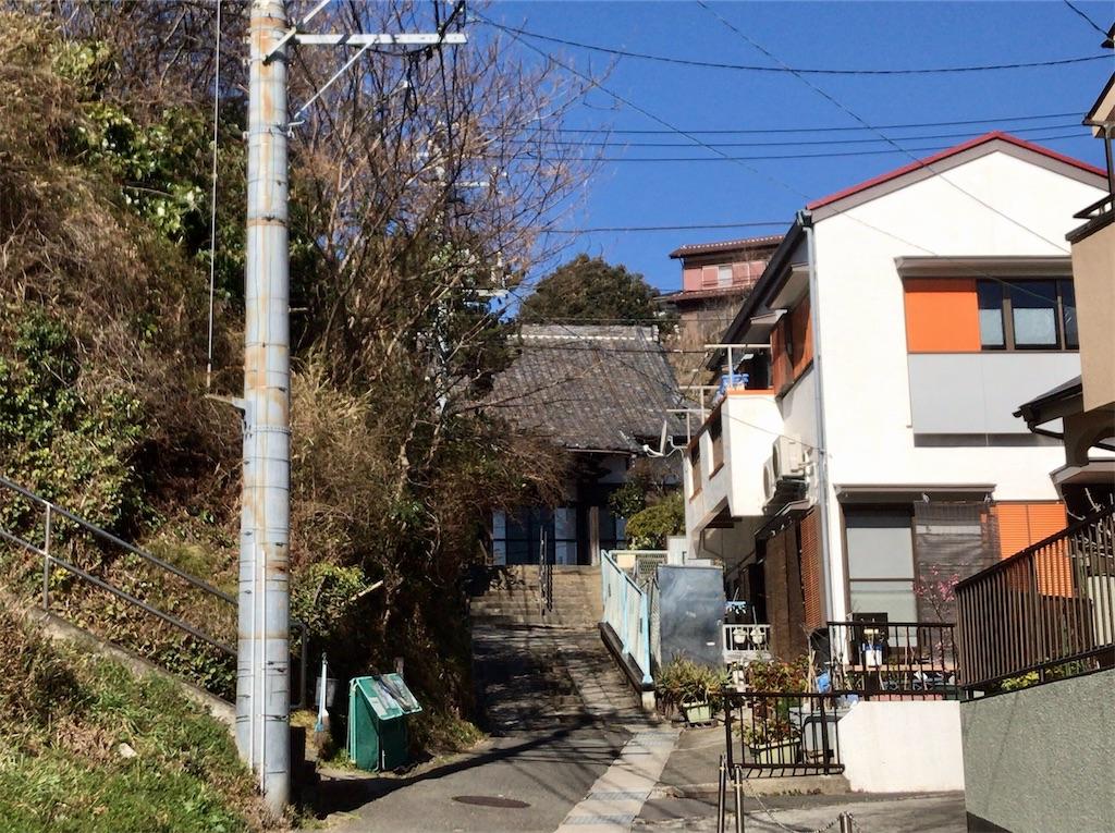 f:id:yokohamamiuken:20210219205258j:image