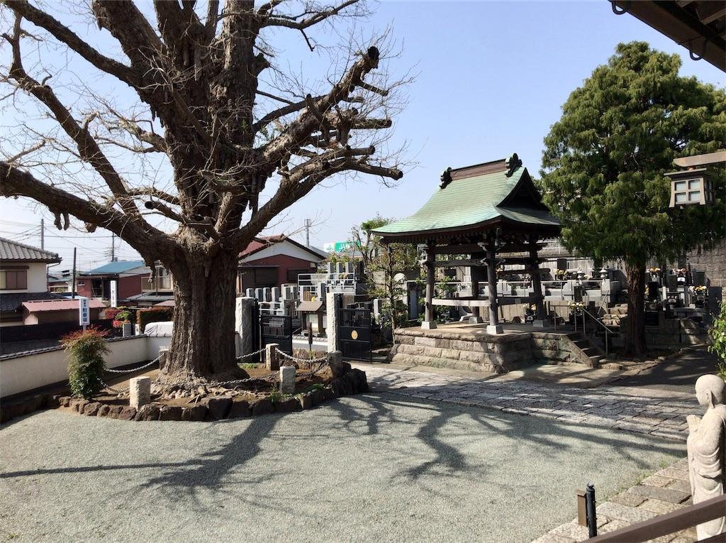 f:id:yokohamamiuken:20210401071306j:image