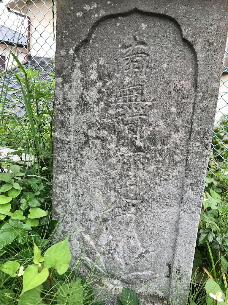 f:id:yokohamamiuken:20210520220747j:image