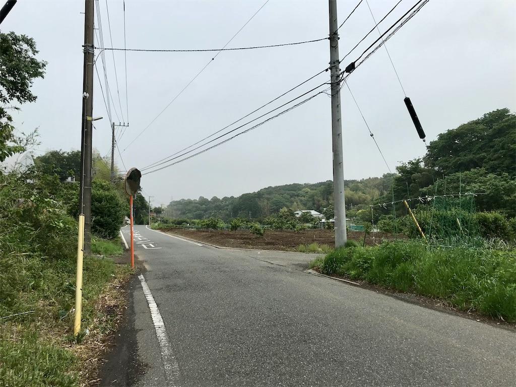 f:id:yokohamamiuken:20210520221311j:image