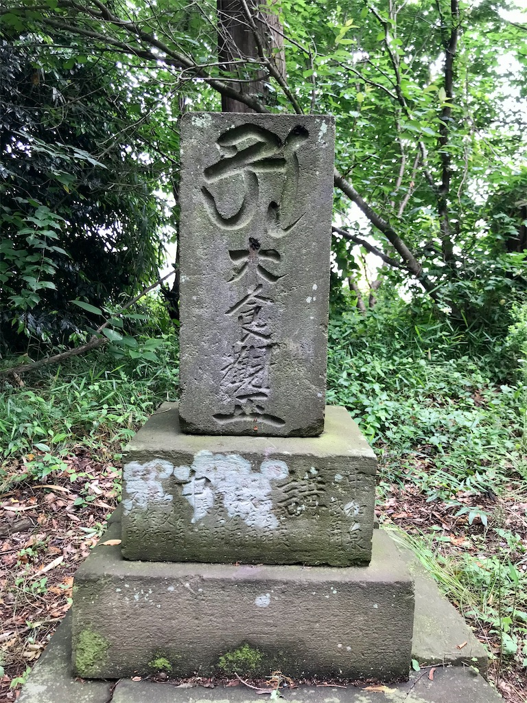 f:id:yokohamamiuken:20210520221942j:image