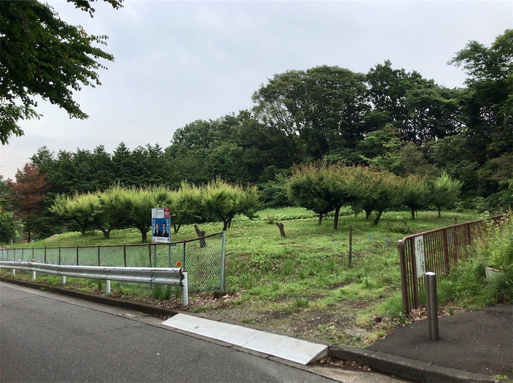 f:id:yokohamamiuken:20210520222042j:image