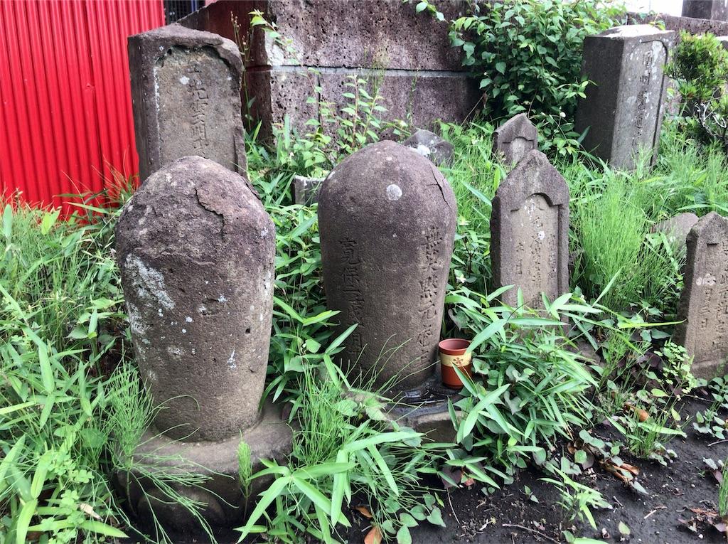 f:id:yokohamamiuken:20210520222337j:image