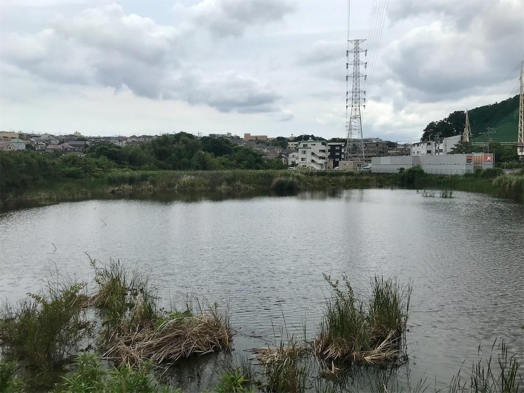 f:id:yokohamamiuken:20210602132227j:image