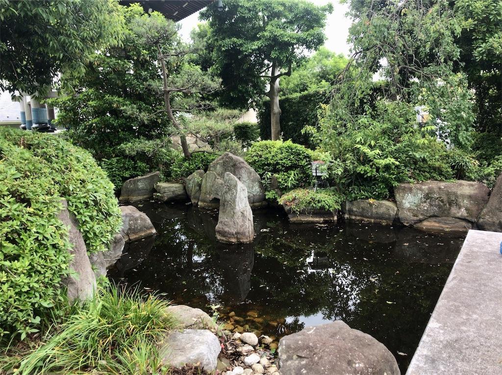 f:id:yokohamamiuken:20210602132339j:image