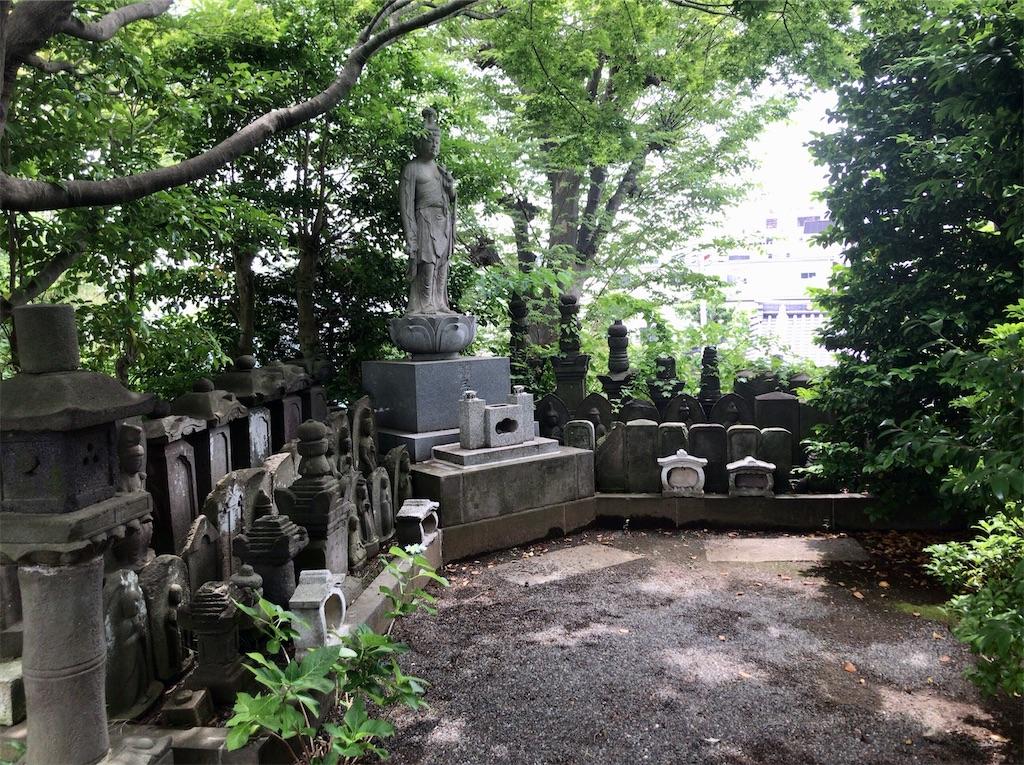 f:id:yokohamamiuken:20210602132410j:image