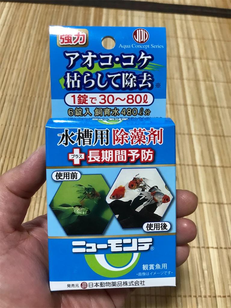 f:id:yokohamamiuken:20210602174107j:image