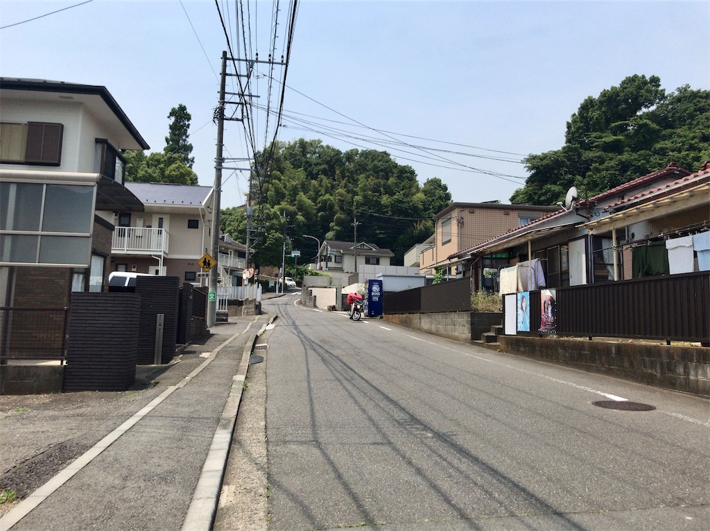f:id:yokohamamiuken:20210608154823j:image
