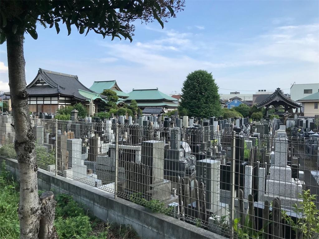 f:id:yokohamamiuken:20210615223840j:image