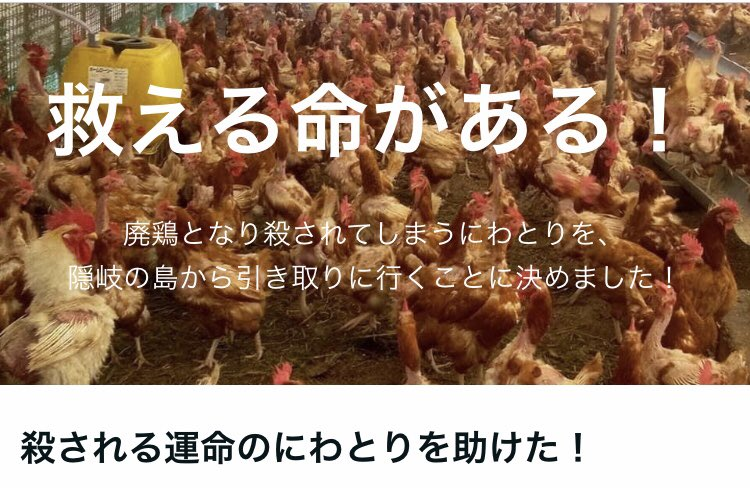 f:id:yokohamamiuken:20210624001118j:plain