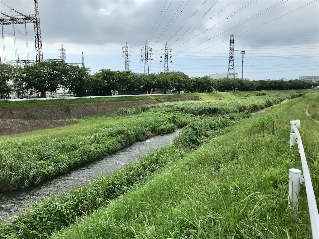 f:id:yokohamamiuken:20210624220201j:image