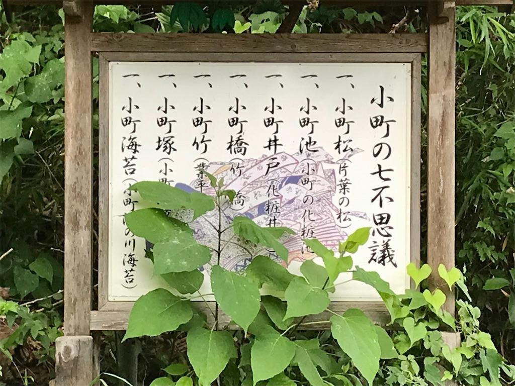 f:id:yokohamamiuken:20210624222423j:image