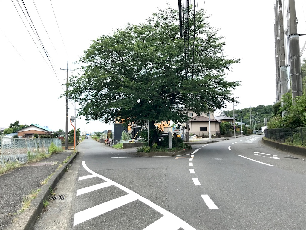 f:id:yokohamamiuken:20210624222710j:image