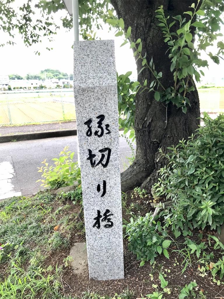 f:id:yokohamamiuken:20210624222729j:image