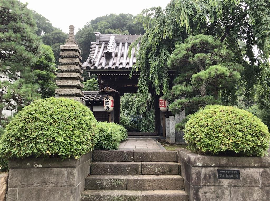 f:id:yokohamamiuken:20210707163150j:image