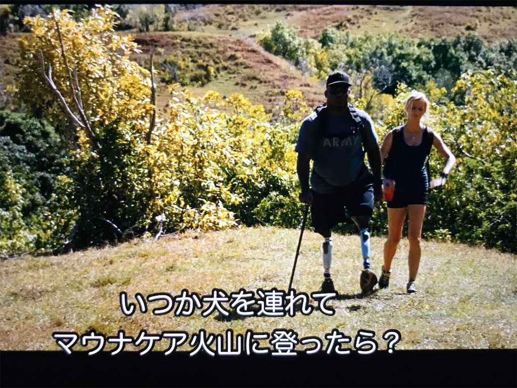 f:id:yokohamamiuken:20211007001758j:image